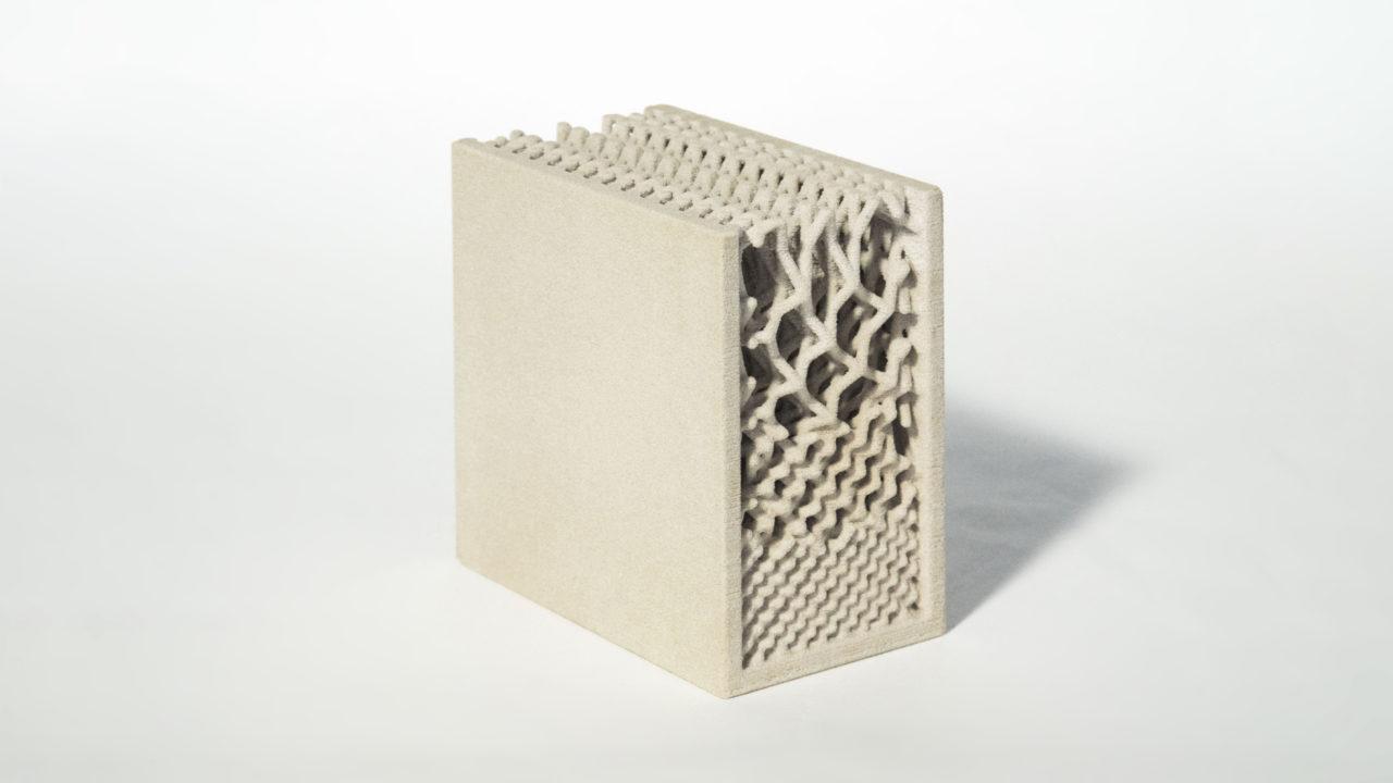 3D printed graded lattice for structural differentiation (Raphael Pastrana, Francisco Regalado)